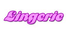Lingerie category